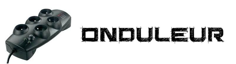 Choisir Onduleur